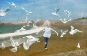 Amanda Cass Seagulls